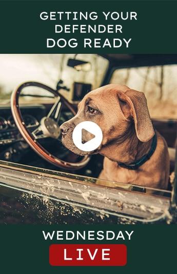 Helderburg Live – Getting Your Defender Dog Ready