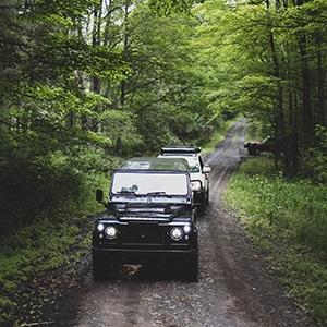 Rovers in the Woods II Event June 2021